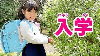 桜がきれいだったので、ランドセルをピカピカのランドセルを背負ってお...