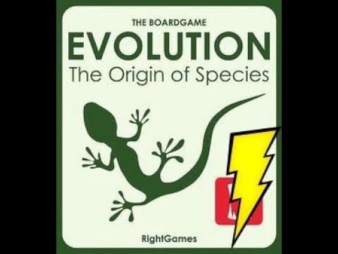 Evolution:The origin of species | Blitz explanation