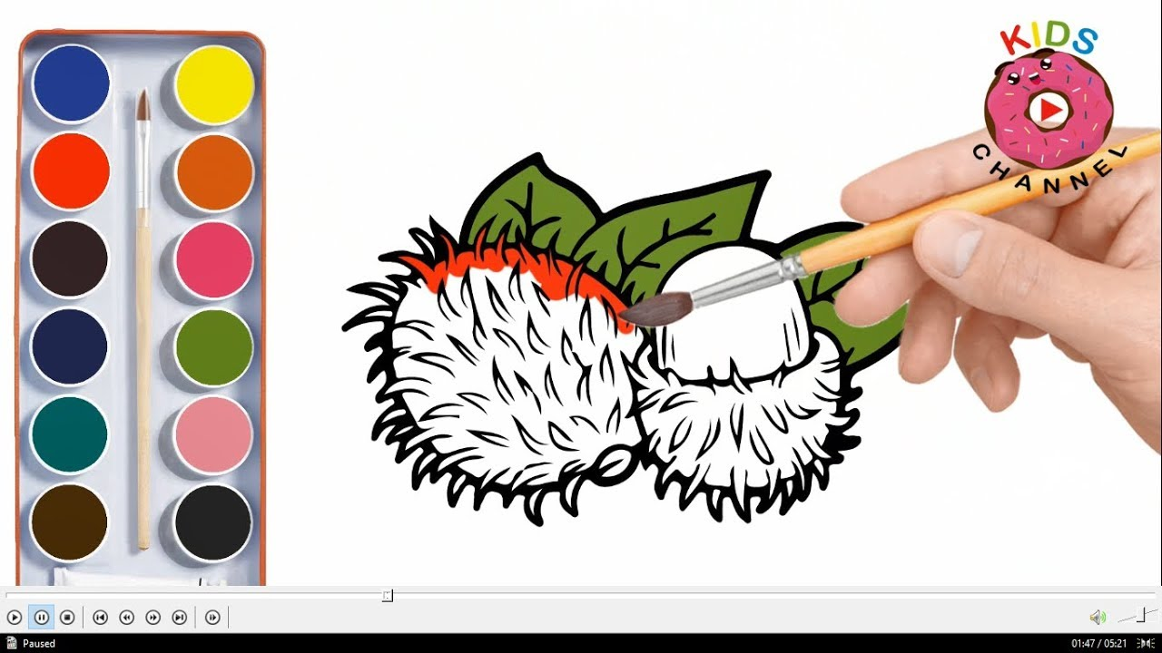 how to draw rambutan and star fruit rambutan coloring pages learn coloring kids channel