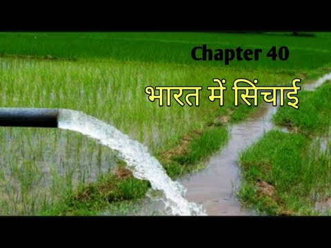 IRRIGATION AND MEDIUM OF IRRIGATION IN INDIA IN HINDI FOR ALL GOVT EXAM | INDIAN GEOGRAPHY