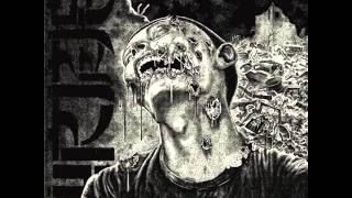 Wormrot - Dirge (Full Album)