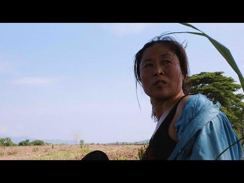 ある北朝鮮の女性が国を離れ…!映画『マダム・ベー ある脱北ブローカーの告白』予告編