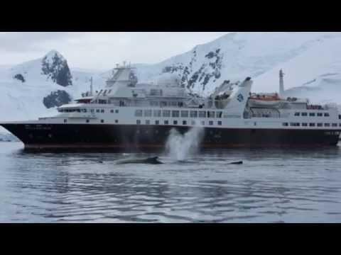 Silverseas: Antarctica