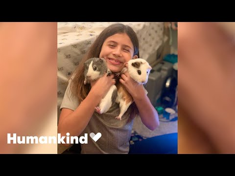 Parents surprise little girl with two new best friends | Humankind