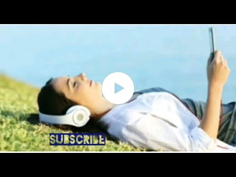 Maind Fresh Music Jarico Island Music // 🎧🎼 Use Headphone