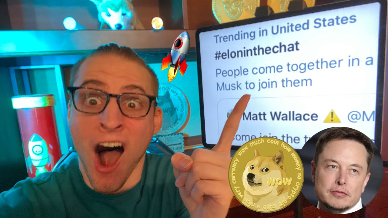 Elon Musk Joined Our Dogecoin Chat!!!