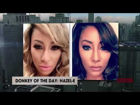 Hazel-E | Donkey Of The Day