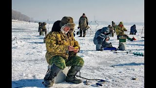 видео На что, как ловить окуня зимой