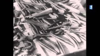Lhommage Dandré Malraux à Jean Moulin : entre Ici  19 Décembre 1964