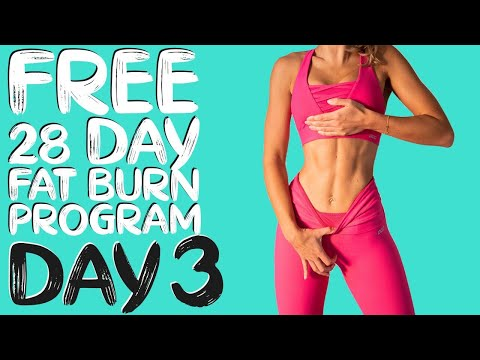 DAY 3 | FREE 28 DAY WORKOUT CHALLENGE | Abs & Total Body Fat Burn | Timer & Modifications Included