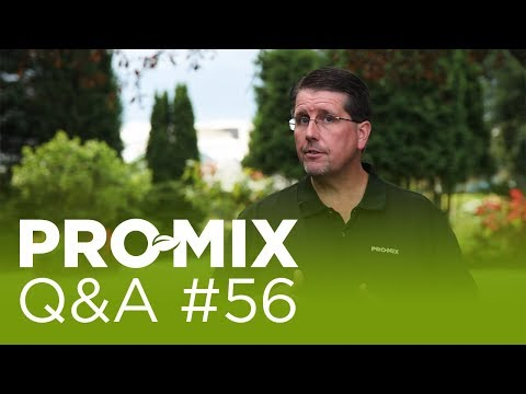 Why are there 2 lime sources in many PRO-MIX products?