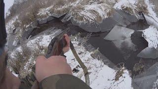 Охота на бобра с ружьем зимой, выстрел по бобру. hunting for a beaver shot beaver