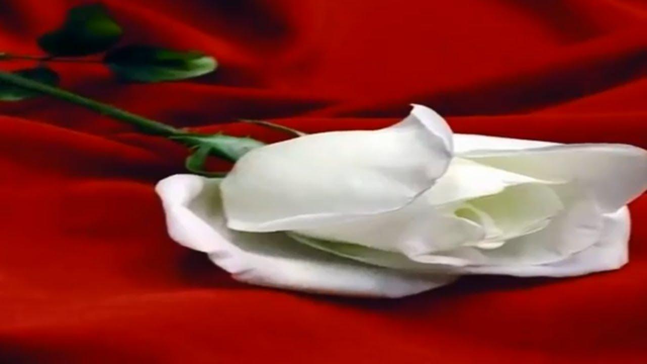 Sevgiliye en güzel romantik günaydın mesajları