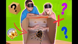 MYSTERY BOX CHALLENGE! (WHAT'S INSIDE?!) *scary* // SoCassie