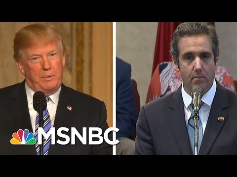 Donald Trump Calls Cohen A Liar. Cohen's Reportedly Furious At Donald Trump. | The 11th Hour | MSNBC