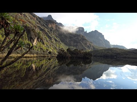 Rwenzori: Mountains of the Moon, Uganda in 4K Ultra HD