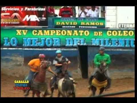 15 Aniv. Milenium, en Guanare-Portuguesa, Manga de coleo David Ramos, Sep 2.014, 4ta parte, 2 de 4