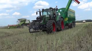 Żniwa 2015 - **GR. Ptaszkowo** 5 x Claas Lexion & New Holland/Fendt/Have/*WPADKI*