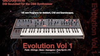 DSI - OB6 Custom Patches - 000 to 029