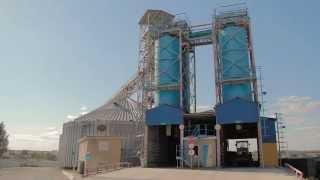 АП-ГРУПП: Загрузка 20ft контейнера на зерновом терминале Широкая Балка.