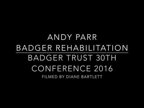 Andy Parr, Lancashire Badger Group - Badger Rehab - Badger Trust Conference 2016