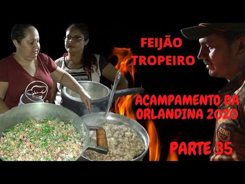FEIJÃO TROPEIRO/JANTAR ESPECIAL
