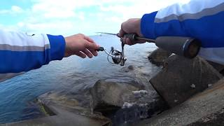 Rockfishing на Черном море Морская игра
