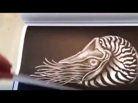 intricate-ink-animals-in-detail-by-tim-jeffs-coloring-book-review-done-by-jennifer-shaffer-art.