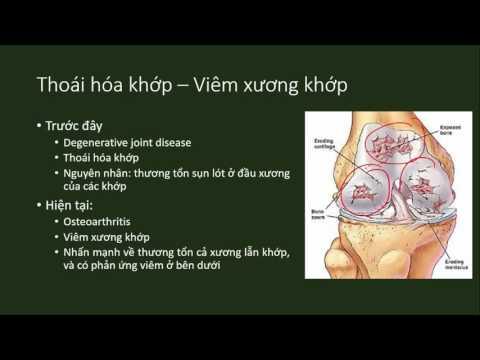 [Y6] Điều trị đau phần 1 - Lý thuyết (pain management)