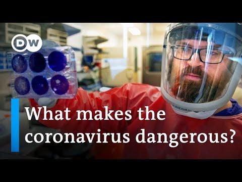 Coronavirus: Will A Vaccine Come In Time? | DW News