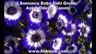 somuncu baba ilahi grubu aşkın oduyla canımı http www hakweb com youtube