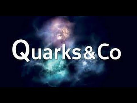 Quarks & Co Transsexuality (Documentary, english subs)