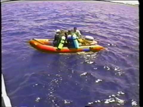 BORNEO1996 UNDERWATER
