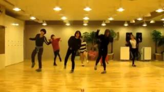 T ara   Lovey Dovey mirrored dance practice/// Супер девушки танцуют супер танец SHUFFLE.