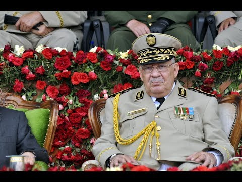 قايد صالح يصر على إجراء انتخابات الرئاسة الجزائرية في موعدها  - نشر قبل 4 ساعة
