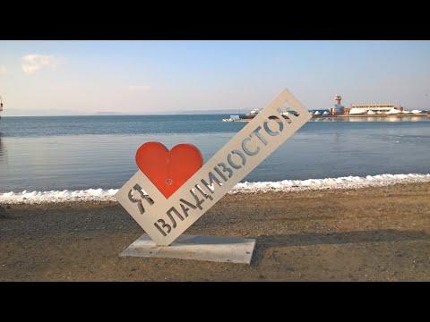Ёлка на набережной . Владивосток