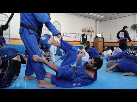 Do you think you could pass Leandro Lo's guard? || In the Gym with BJJ Hacks