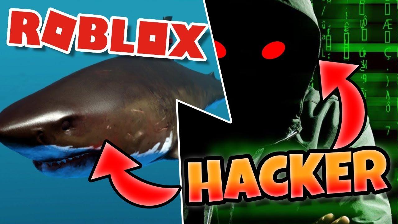 Scary Shark Hacker In Roblox Sharkbite Gameplay Youtube