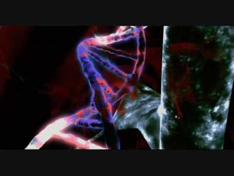 DNA-Veränderung von Peter Parker - YouTube