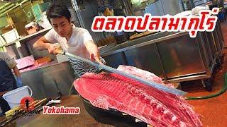 ตลาดประมูลปลามากุโร่ใจกลางโยโกฮาม่า SUGOI JAPAN - สุโก้ยเจแปน ตอนที่ 210 Yokohama