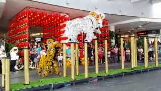 cny 2015 acrobatic lion dance ma ln by kwong ngai paradigm shopping mall