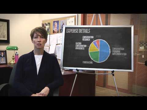 WWF-Canada - Financial Reporting Overview