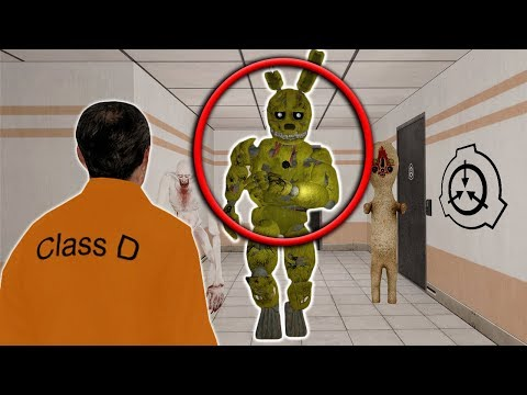 I found SPRINGTRAP IN THE SCP FACILITY with SpyCakes! - SCP Foundation Roleplay in Garry's Mod