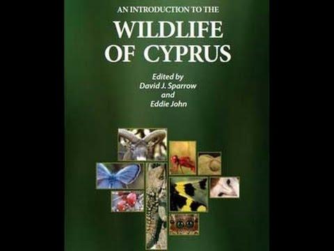 Cyprus News Digest 16th December 2016