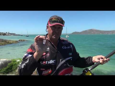 ASFN Rock & Surf - The Smooth Hound Sharks of Langebaan Lagoon