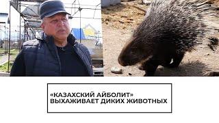 Житель Казахстана помогает раненым животным