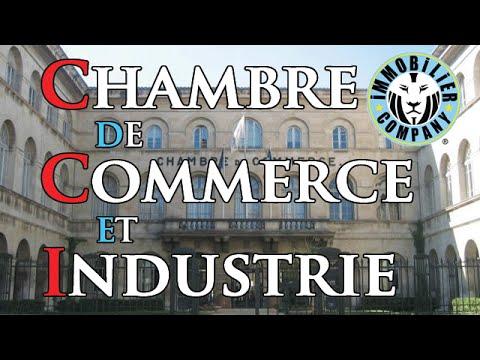 Chambre de commerce et d 39 industrie fonctionnement g n ral - Cci chambre de commerce ...