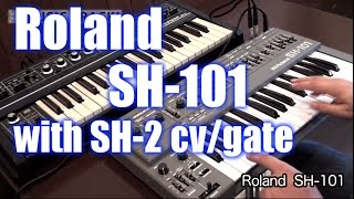 ROLAND SH-101 Demo&Review [English Captions]
