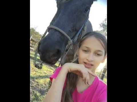 My musically with my horse