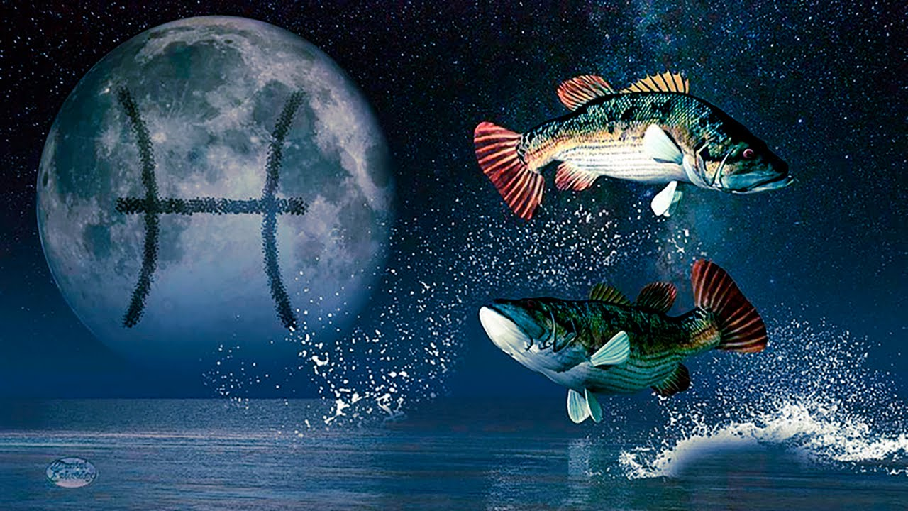 Семейная и любовная совместимость мужчины Рыбы с другими знаками